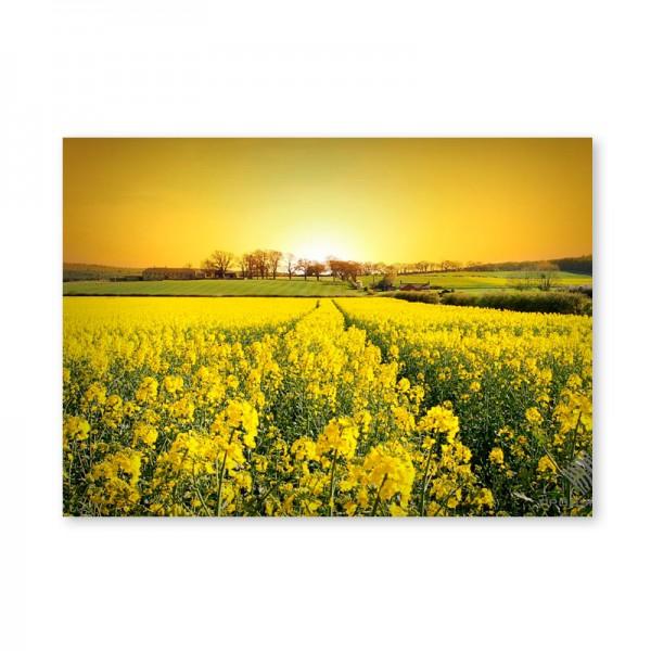 Картина обогреватель «Цветочная поляна на закате» 60X80 см. (0.5 кВт.)