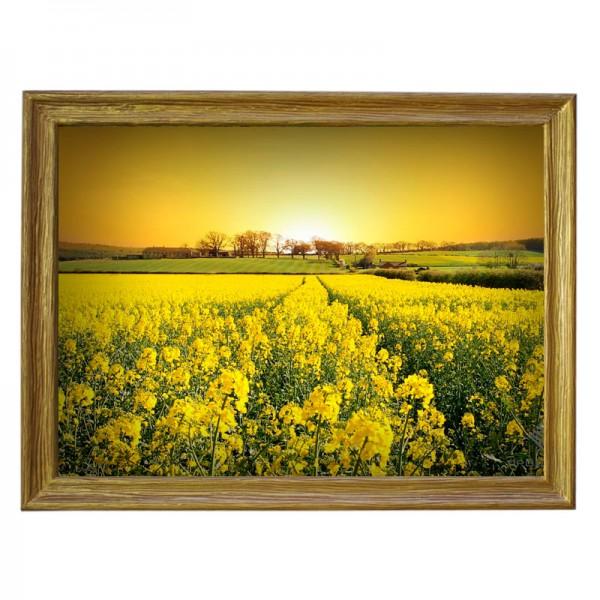 Картина обогреватель «Цветочная поляна на закате» 70X90 см. (0.5 кВт.)