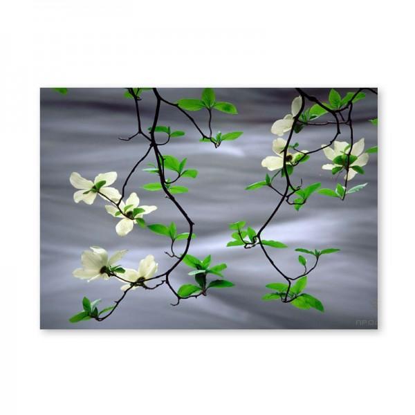 Картина обогреватель «Цветущая ветка над водой» 60X80 см. (0.5 кВт.)