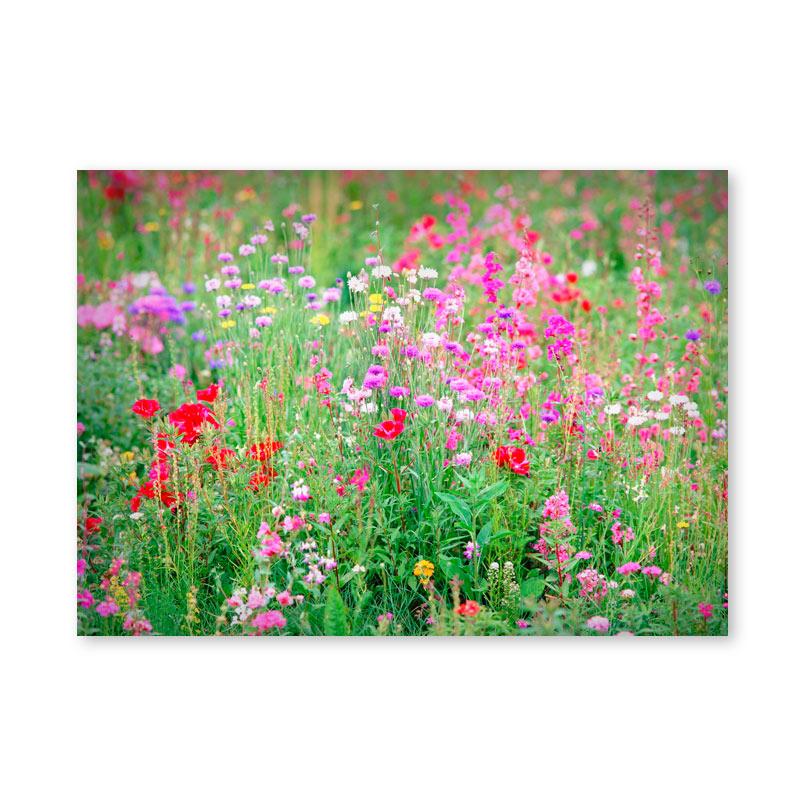 Картина обогреватель «Луговые цветы» 60X80 см. (0.5 кВт.)