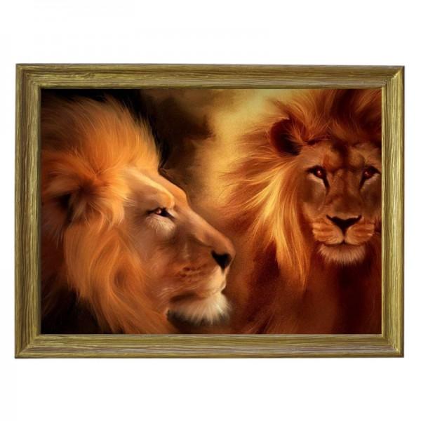 Картина обогреватель «Львы» в рамке ПВХ 70X90 см. (0.5 кВт.)
