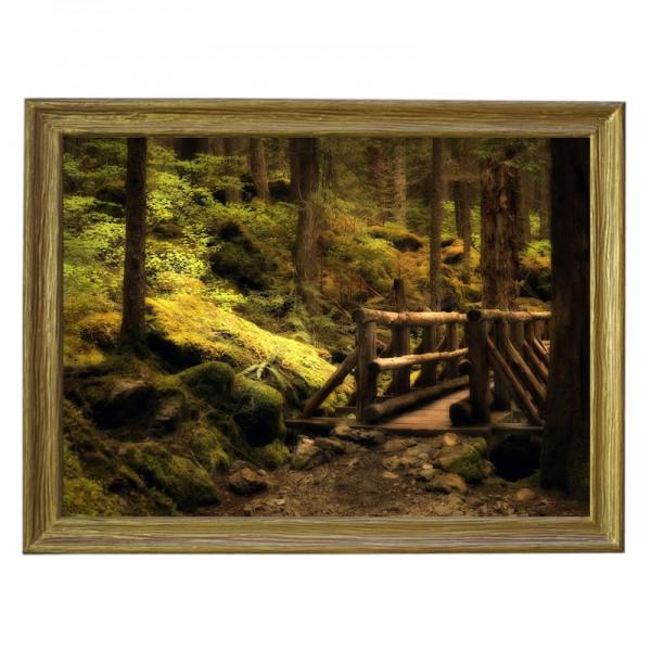 Картина обогреватель «Мостик в лесу» в рамке ПВХ 70X90 см. (0.5 кВт.)