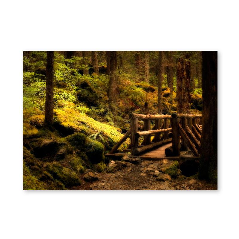 Картина обогреватель «Мостик в лесу» 60X80 см. (0.5 кВт.)