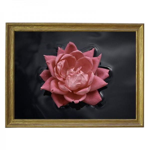 Картина обогреватель «Роза на воде» в рамке ПВХ 70X90 см. (0.5 кВт.)