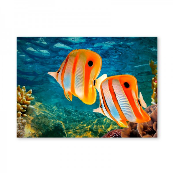 Картина обогреватель «Рыбки!» 60X80 см. (0.5 кВт.)