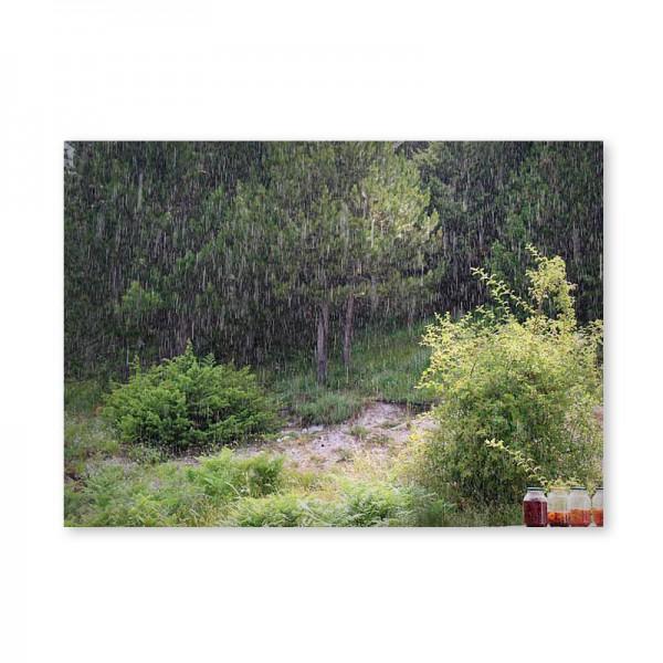 Картина обогреватель «Варенье под дождем» 60X80 см. (0.5 кВт.)